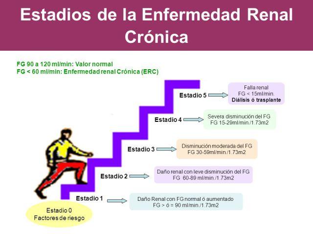 ERC Estadíos 1